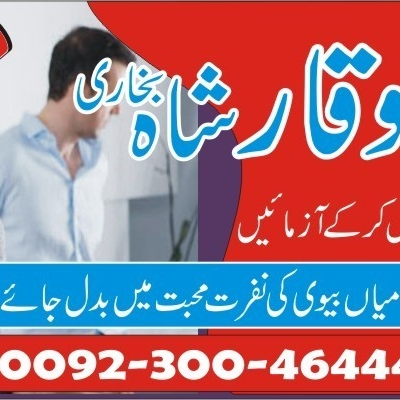 .Husband And Wife Relationship Problems Solution USA