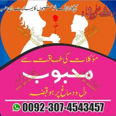 Love Marriage Problems Solution Usa Online